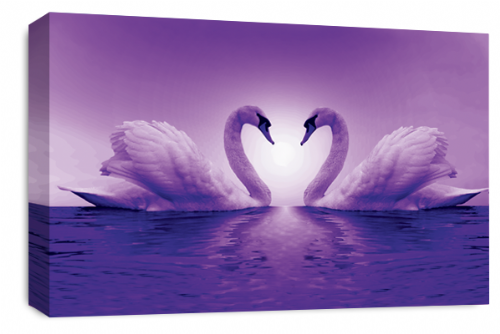 Love Heart Wall Art Picture Kissing Swans Purple White Print